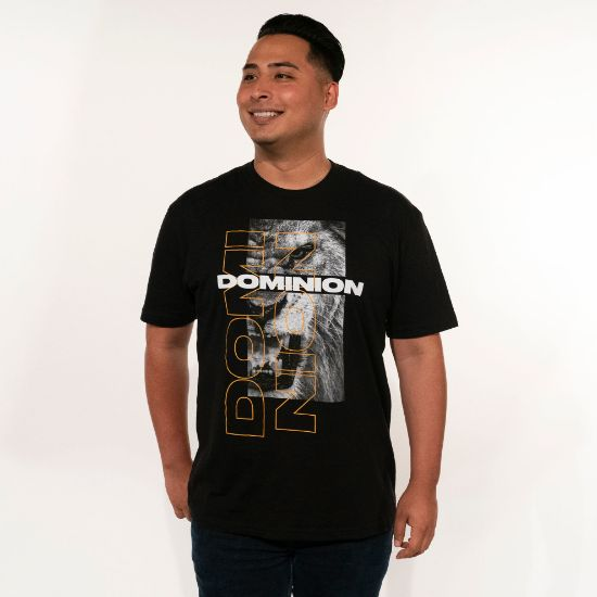 Picture of #DCM2019 Adult T-Shirt (Black)