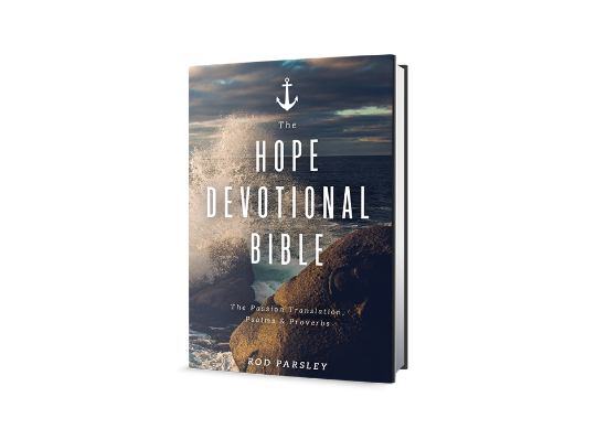 The Hope Devotional Bible